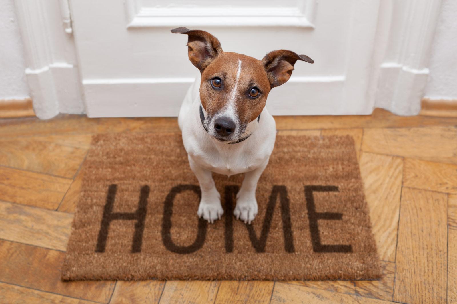 Home Insurance in Huntington Beach, Westminster, CA, Anaheim, Artesia